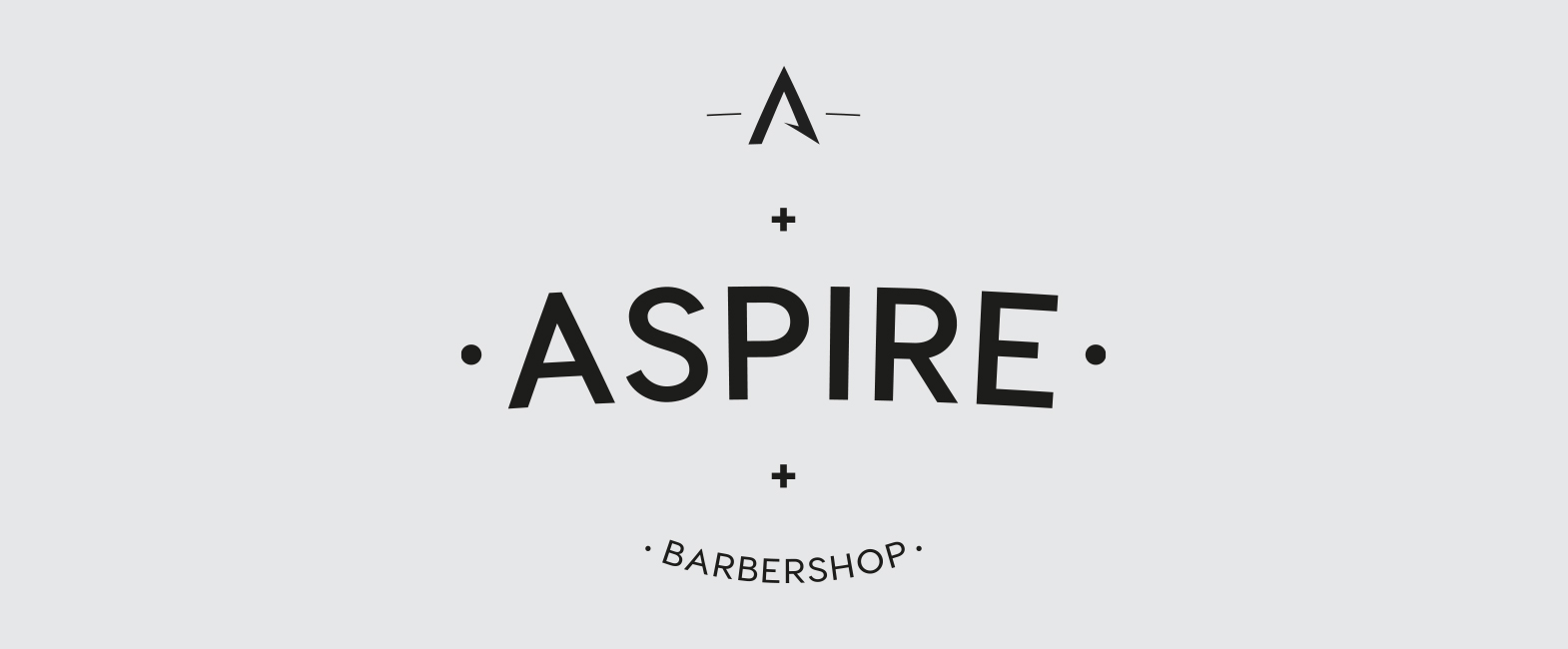 aspire logo construction